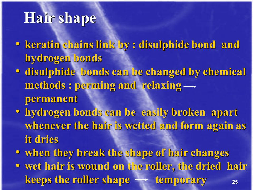 Hair shape keratin chains link by : disulphide bond and hydrogen bonds