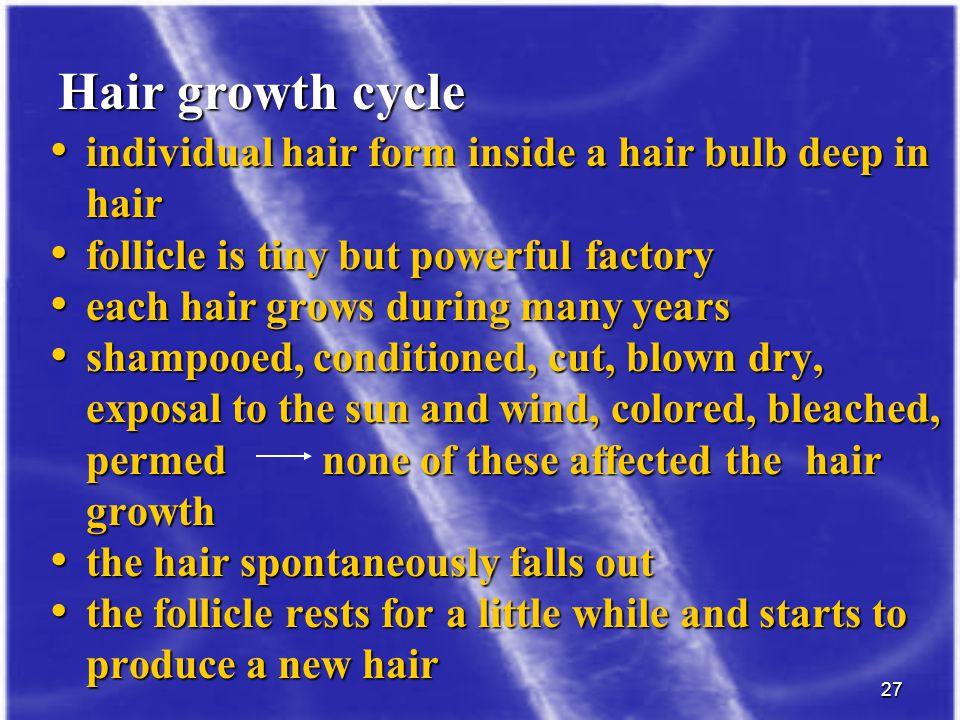 Hair growth cycle individual hair form inside a hair bulb deep in hair