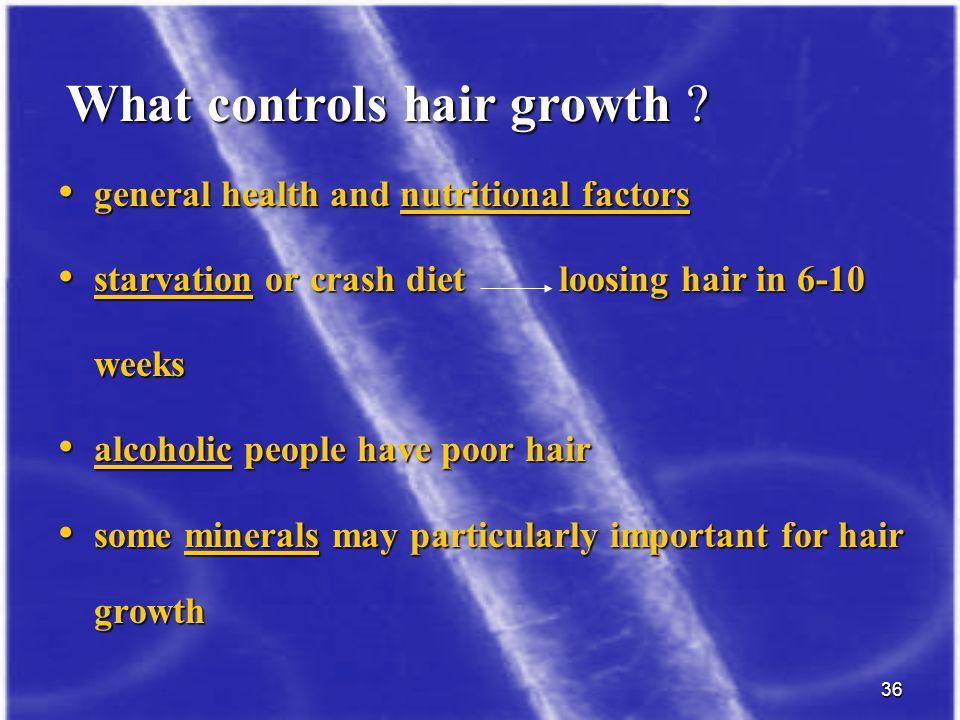 What controls hair growth