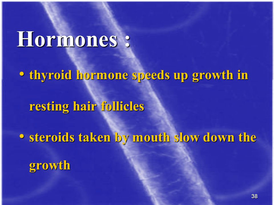 Hormones : thyroid hormone speeds up growth in resting hair follicles
