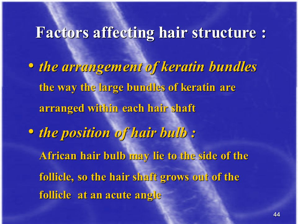 Factors affecting hair structure :