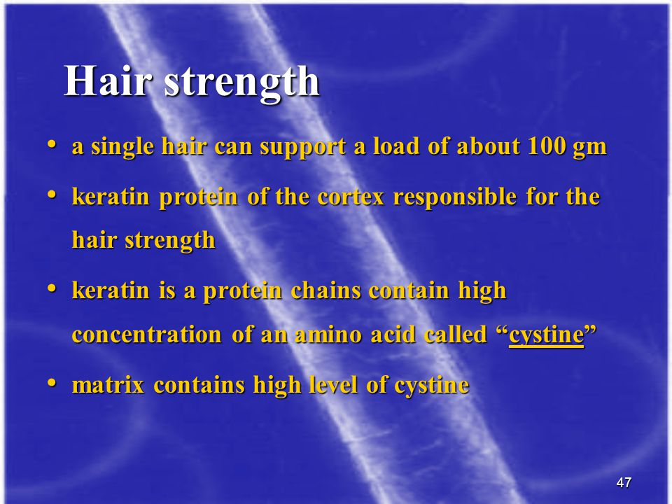 Hair strength a single hair can support a load of about 100 gm