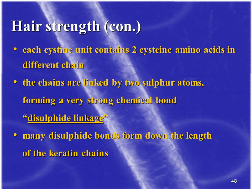 Hair strength (con.) each cystine unit contains 2 cysteine amino acids in different chain. the chains are linked by two sulphur atoms,