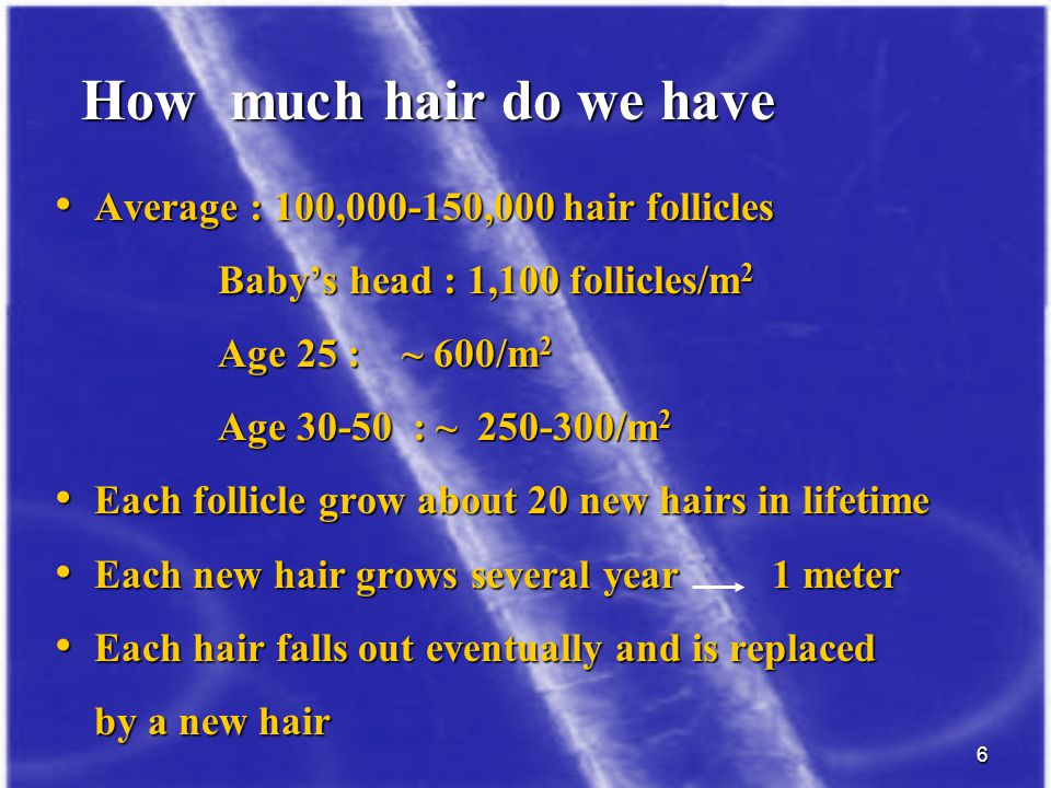 How much hair do we have Average : 100,000-150,000 hair follicles