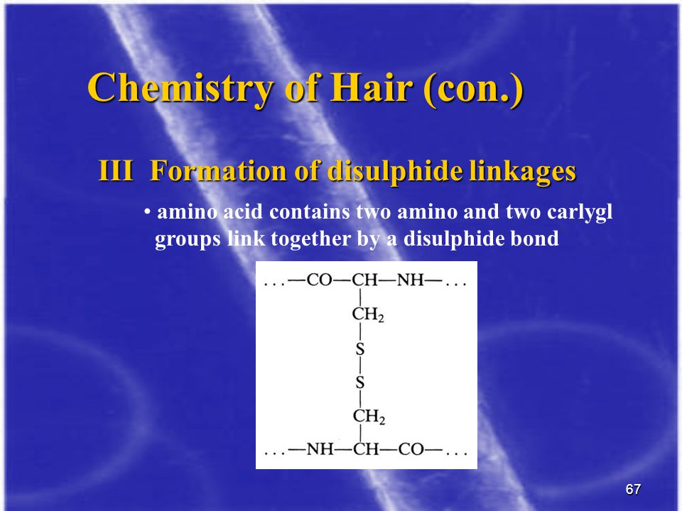 Chemistry of Hair (con.)