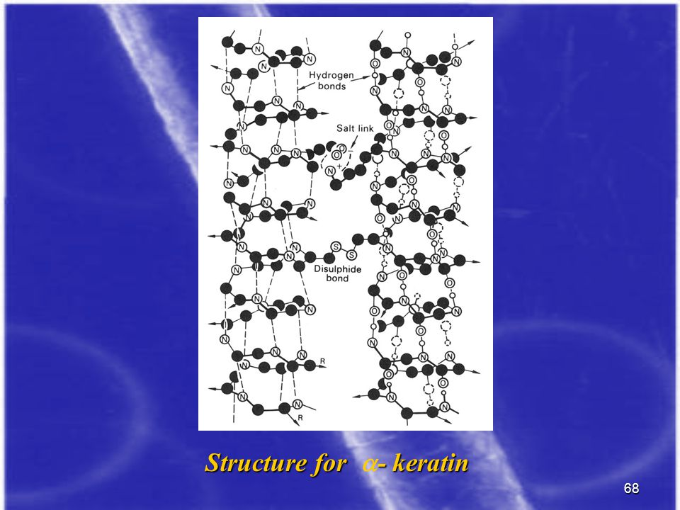 Structure for a- keratin