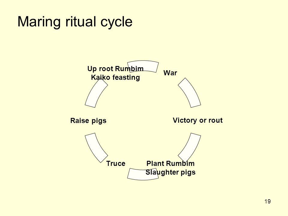 Maring ritual cycle