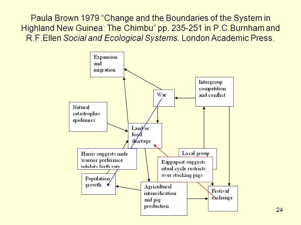 Paula Brown 1979 Change and the Boundaries of the System in Highland New Guinea: The Chimbu pp.