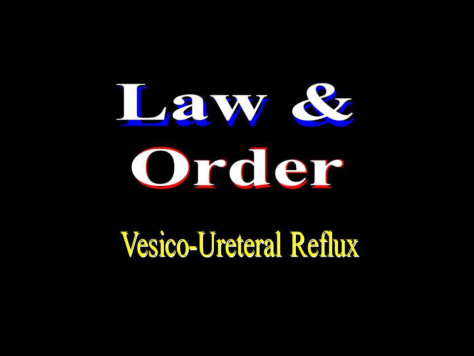 Vesico-Ureteral Reflux