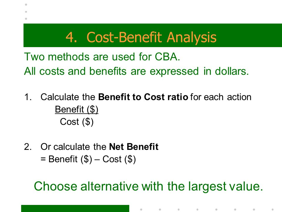 4. Cost-Benefit Analysis