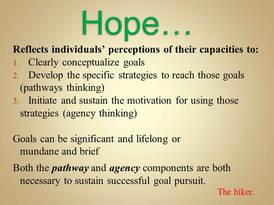 Hope… Reflects individuals' perceptions of their capacities to:
