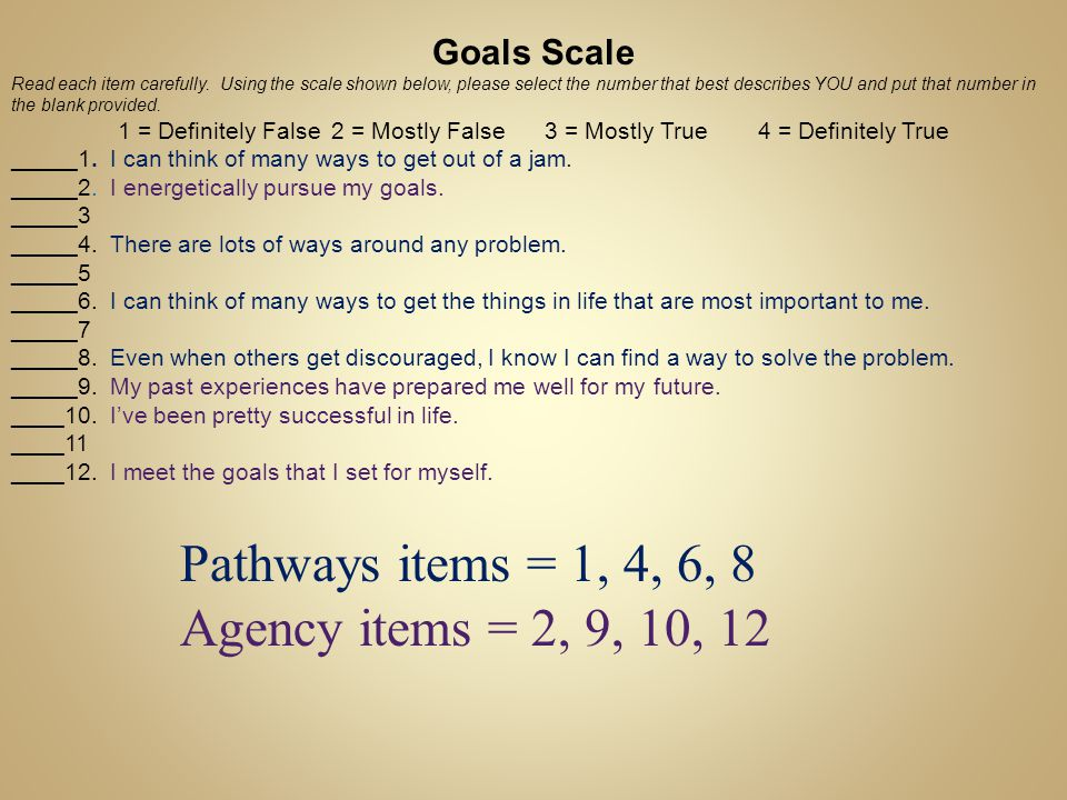 Pathways items = 1, 4, 6, 8 Agency items = 2, 9, 10, 12 Goals Scale