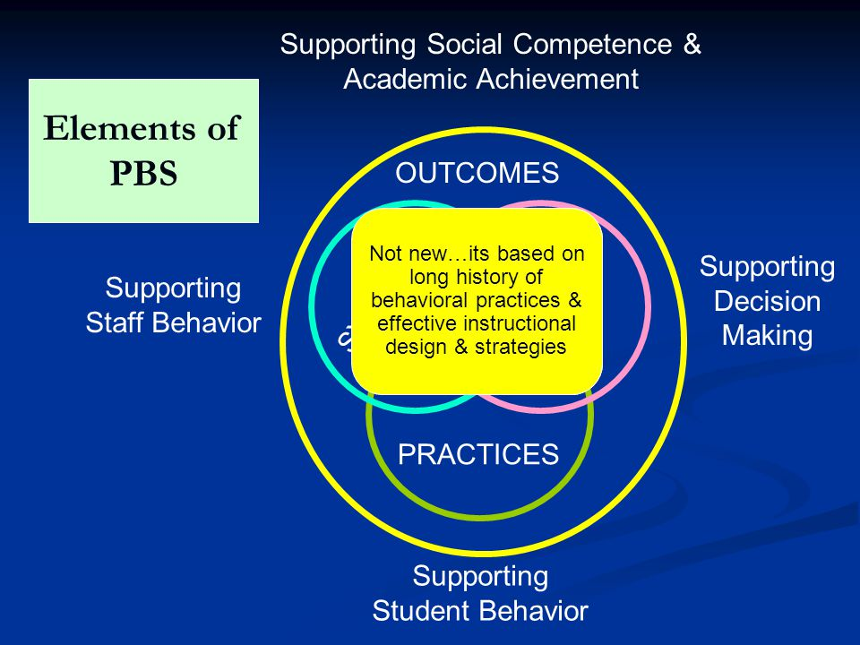 Elements of PBS Supporting Social Competence & Academic Achievement