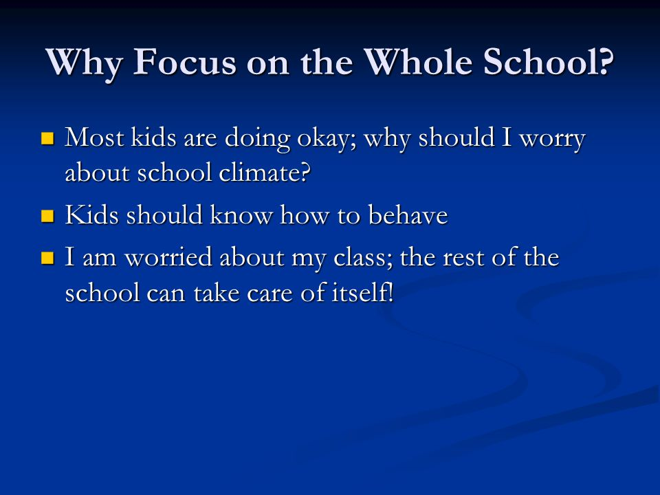 Why Focus on the Whole School