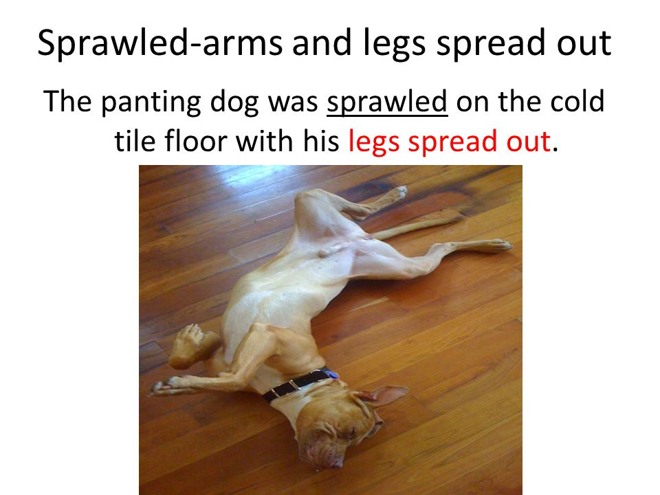 Sprawled-arms and legs spread out