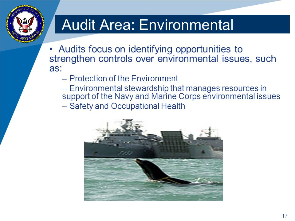 Audit Area: Environmental