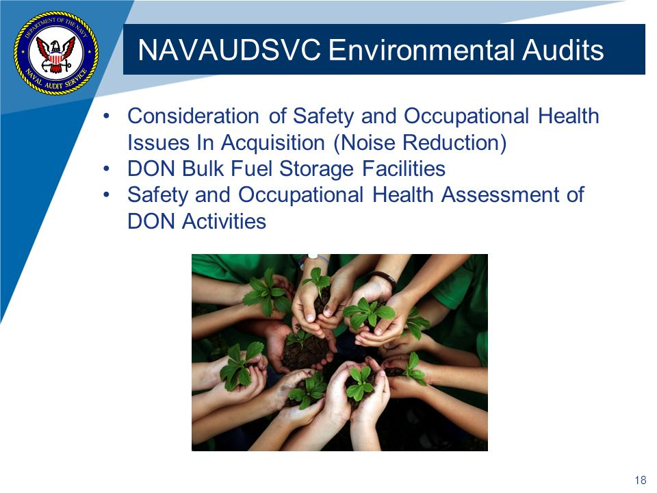 NAVAUDSVC Environmental Audits