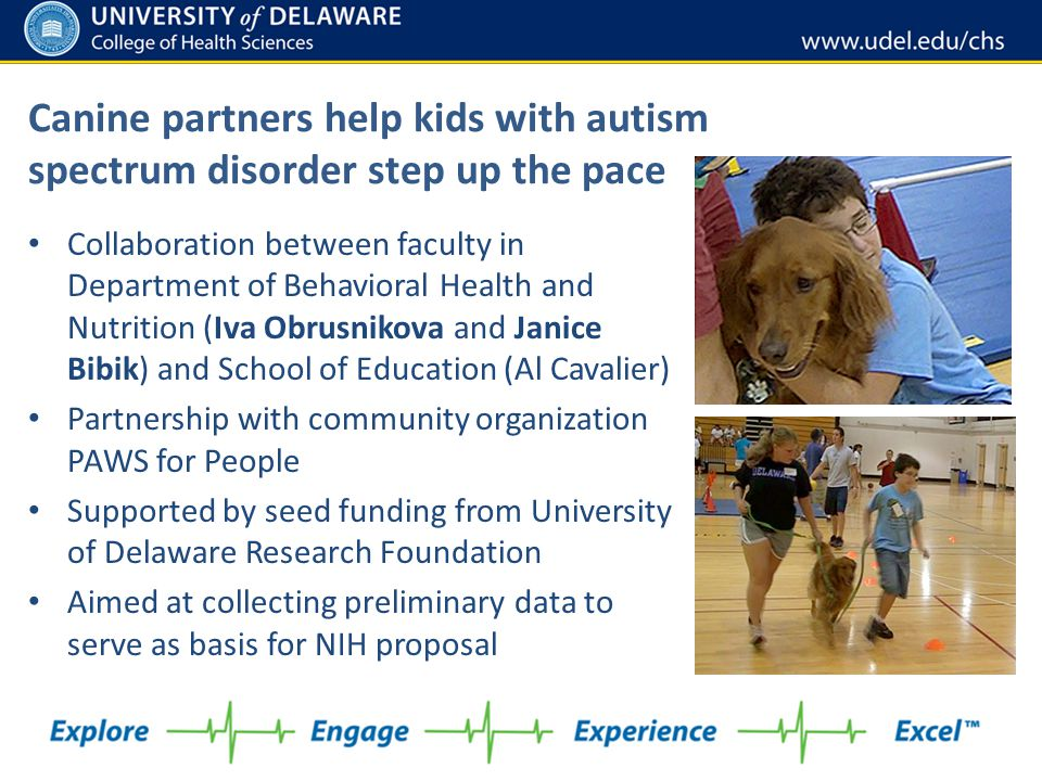 Canine partners help kids with autism spectrum disorder step up the pace