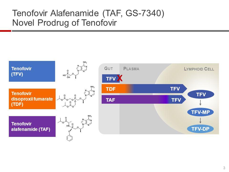 Tenofovir Alafenamide (TAF, GS-7340) Novel Prodrug of Tenofovir