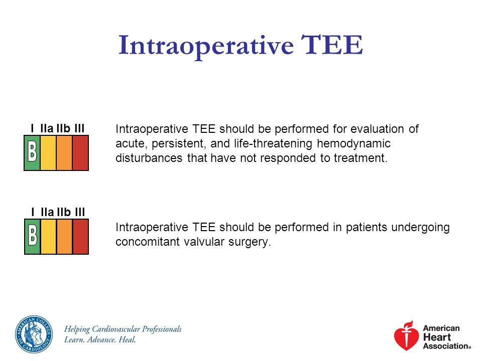 Intraoperative TEE