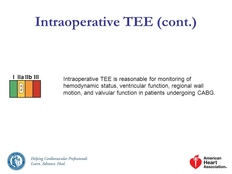 Intraoperative TEE (cont.)