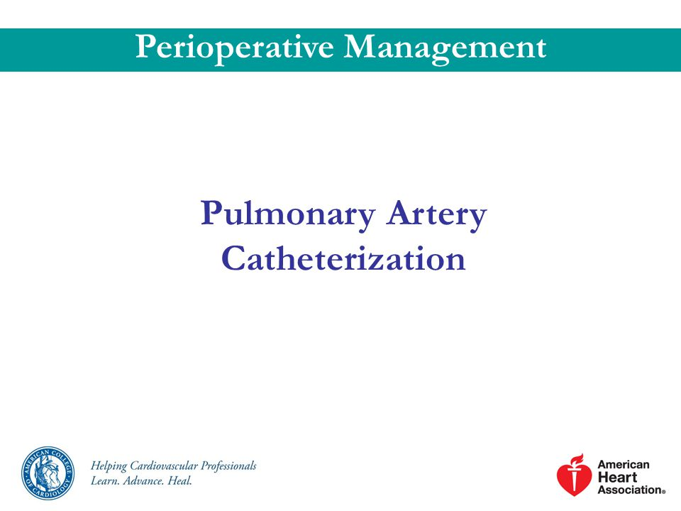 Perioperative Management Pulmonary Artery Catheterization