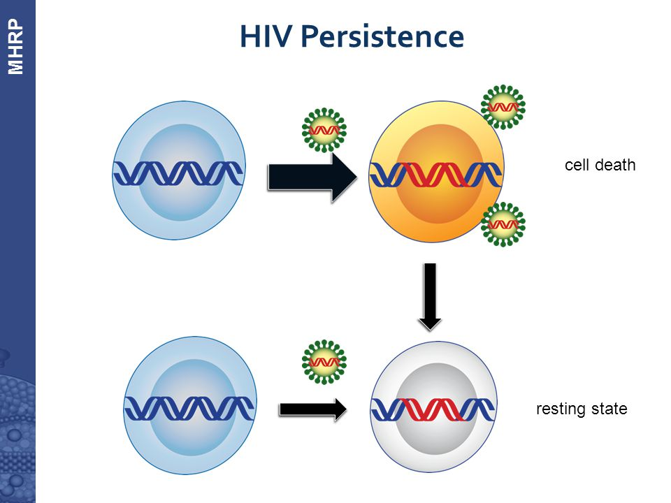 Measuring the HIV Reservoir