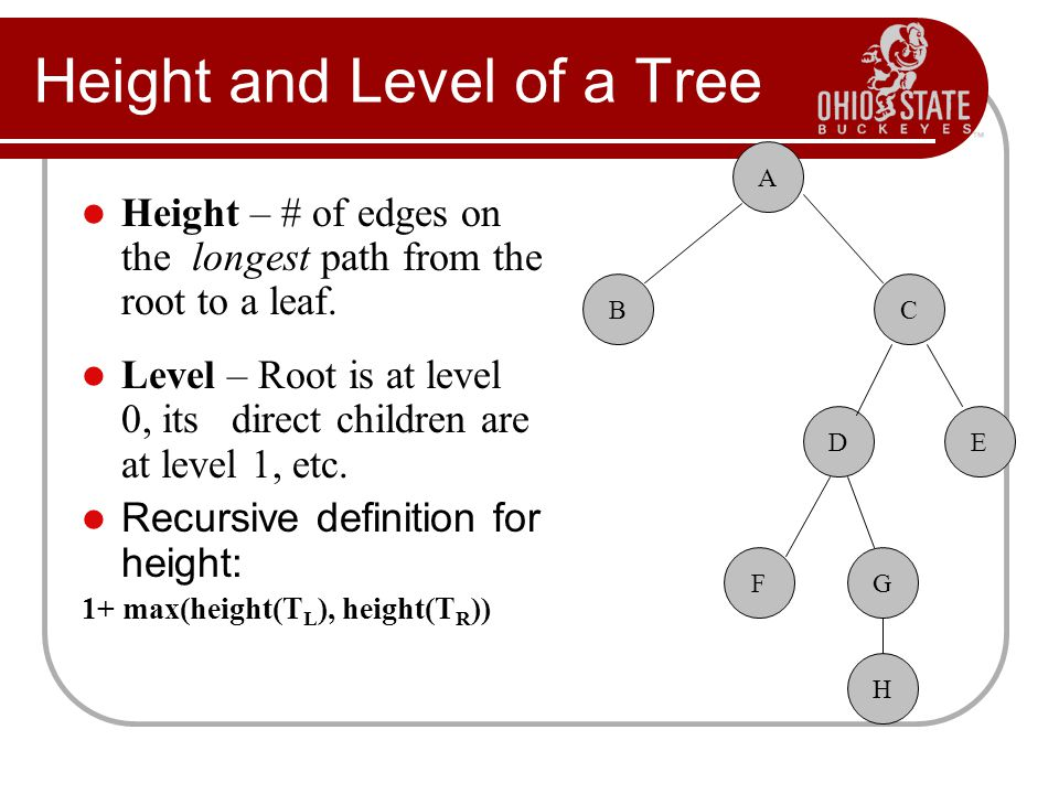 Height and Level of a Tree