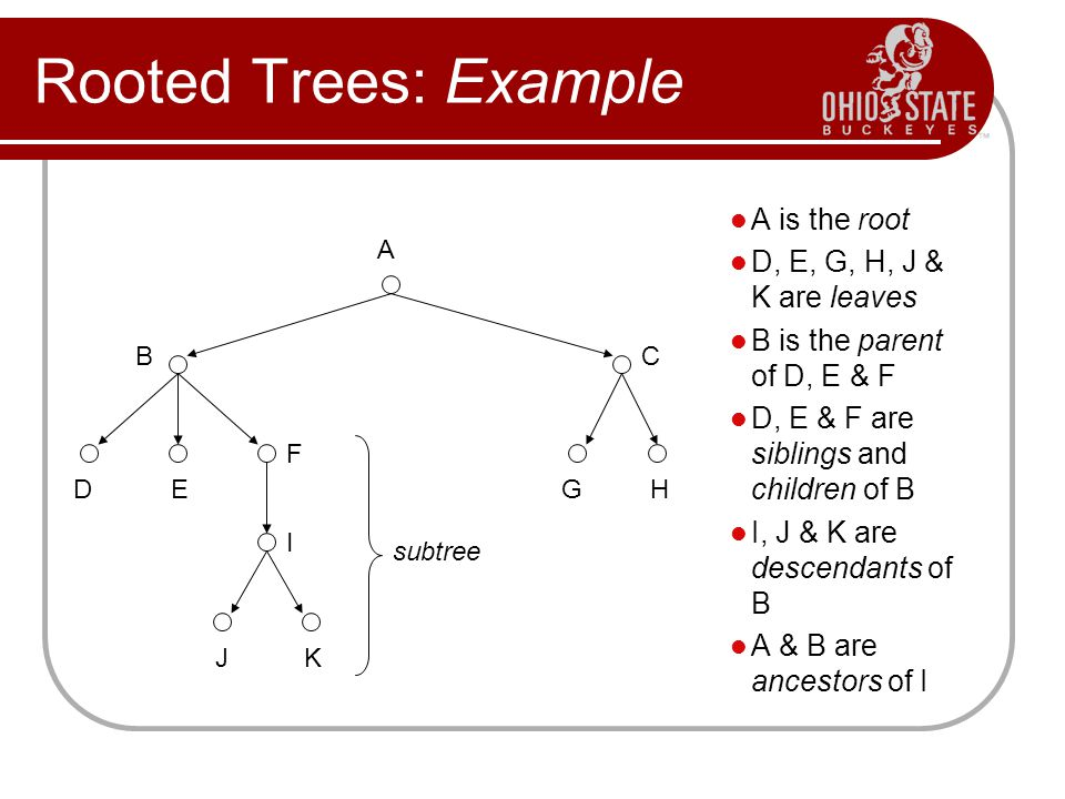 Rooted Trees: Example A is the root D, E, G, H, J & K are leaves