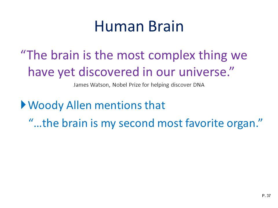 Human Brain The brain is the most complex thing we have yet discovered in our universe. James Watson, Nobel Prize for helping discover DNA.