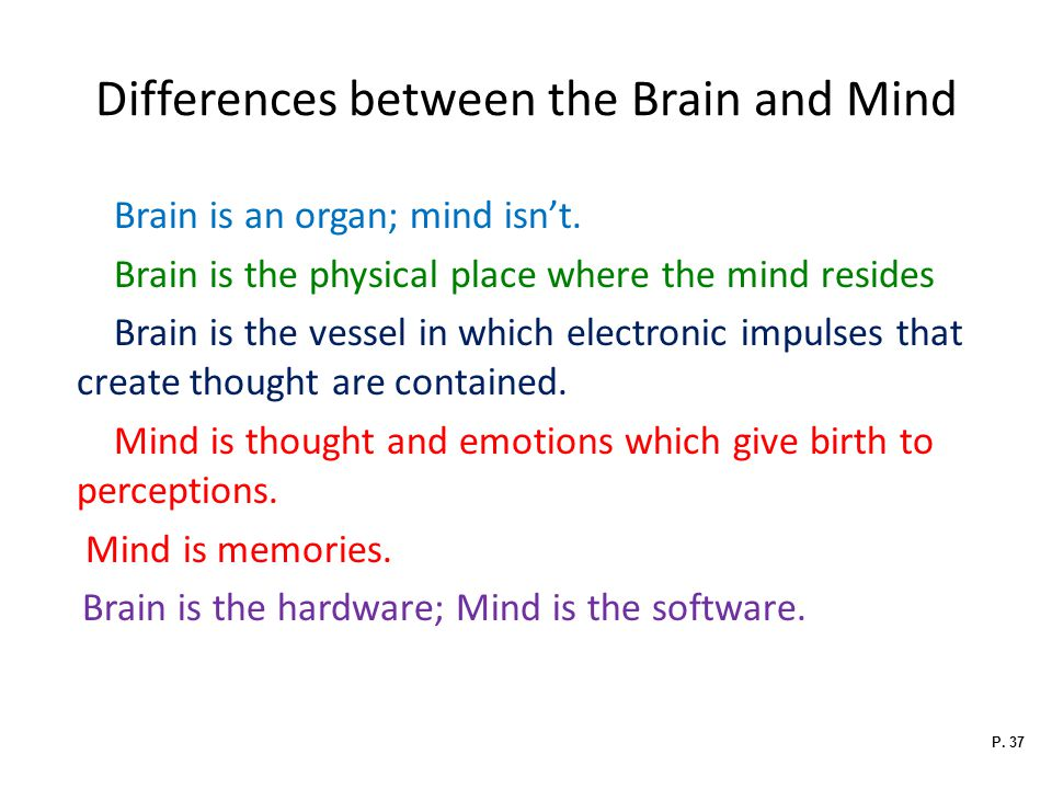 Differences between the Brain and Mind