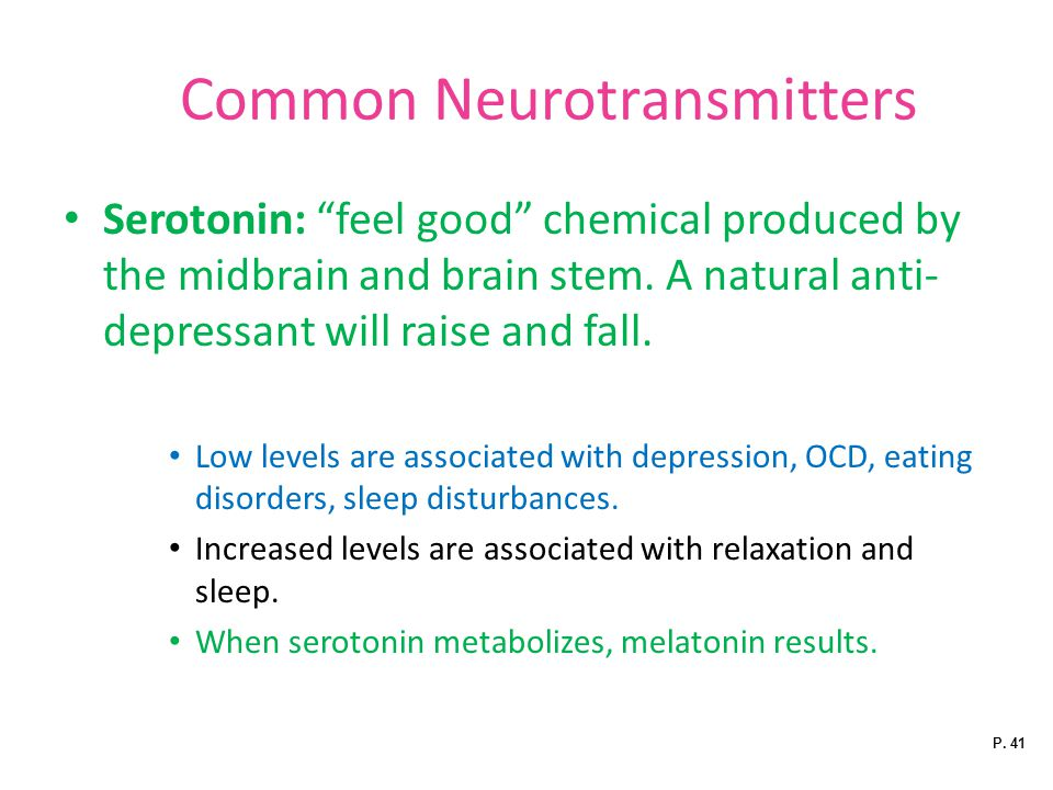 Common Neurotransmitters