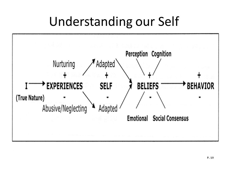 Understanding our Self