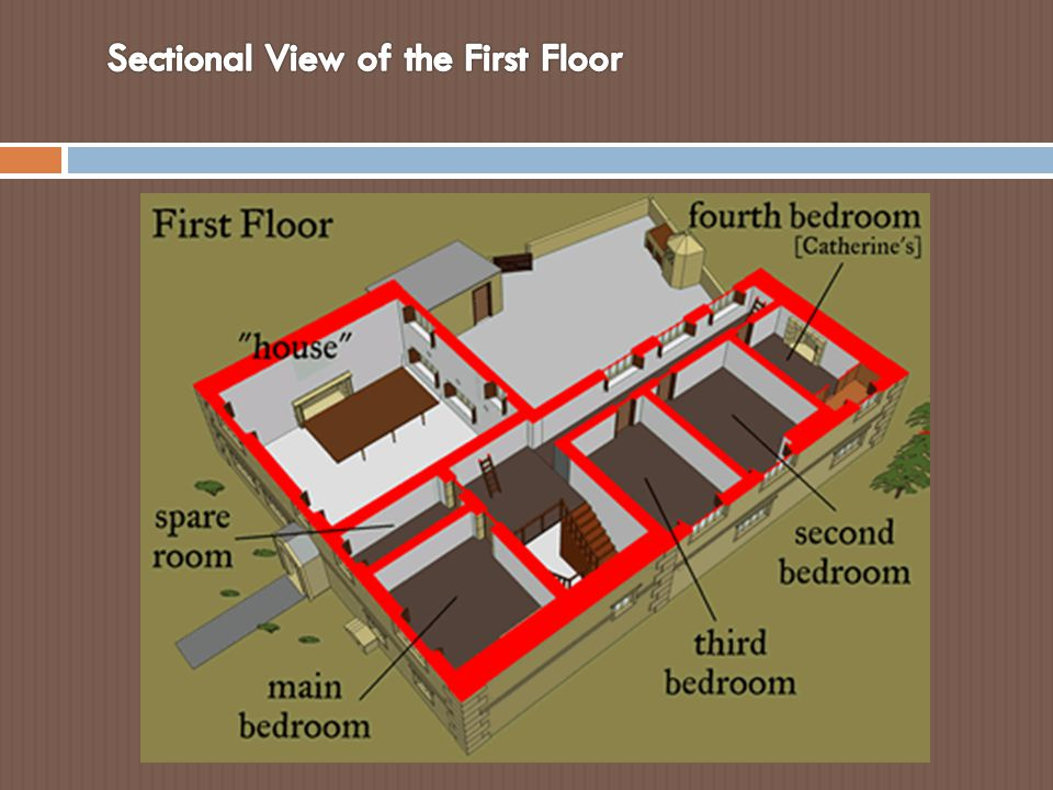 Sectional View of the First Floor