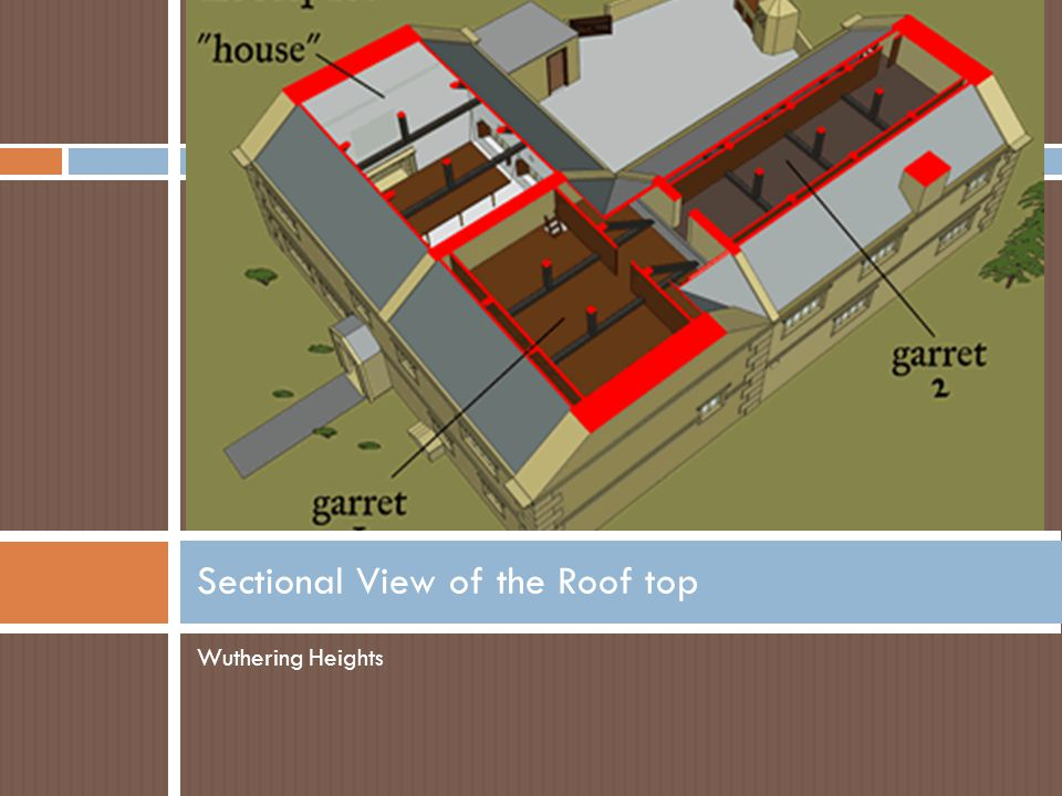 Sectional View of the Roof top