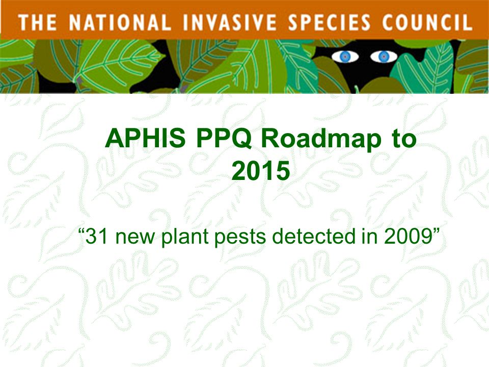 31 new plant pests detected in 2009