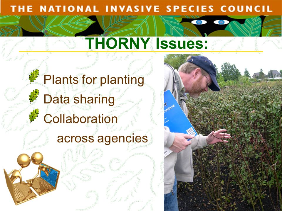 THORNY Issues: Plants for planting Data sharing Collaboration