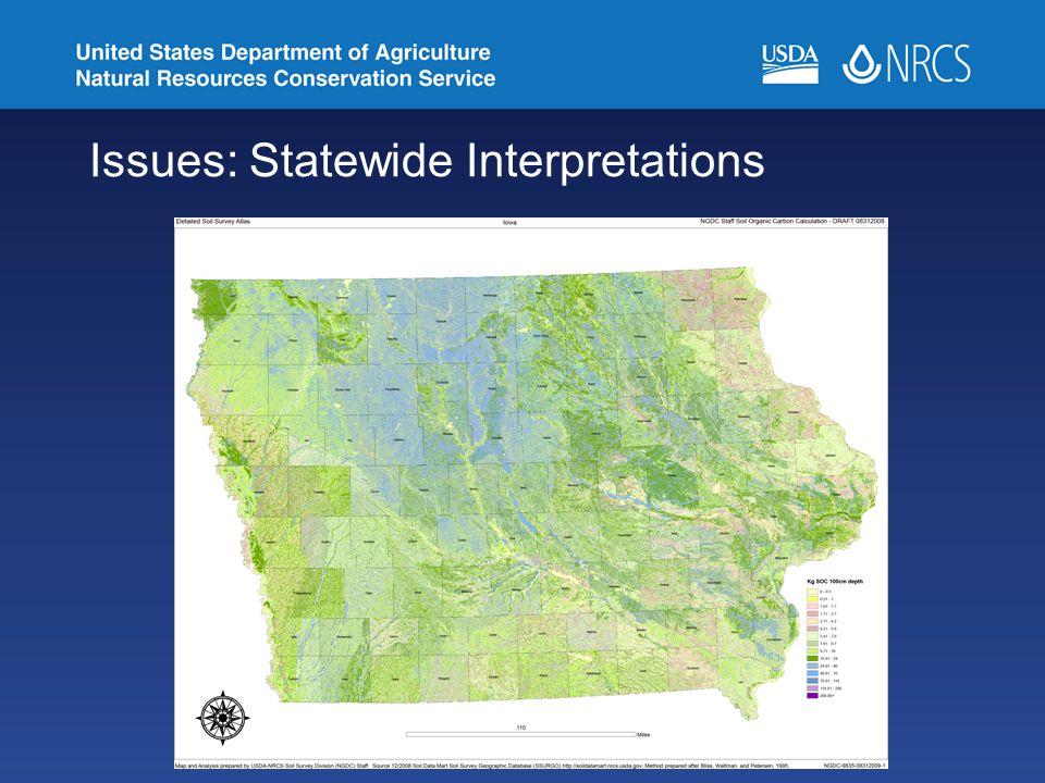 Issues: Statewide Interpretations