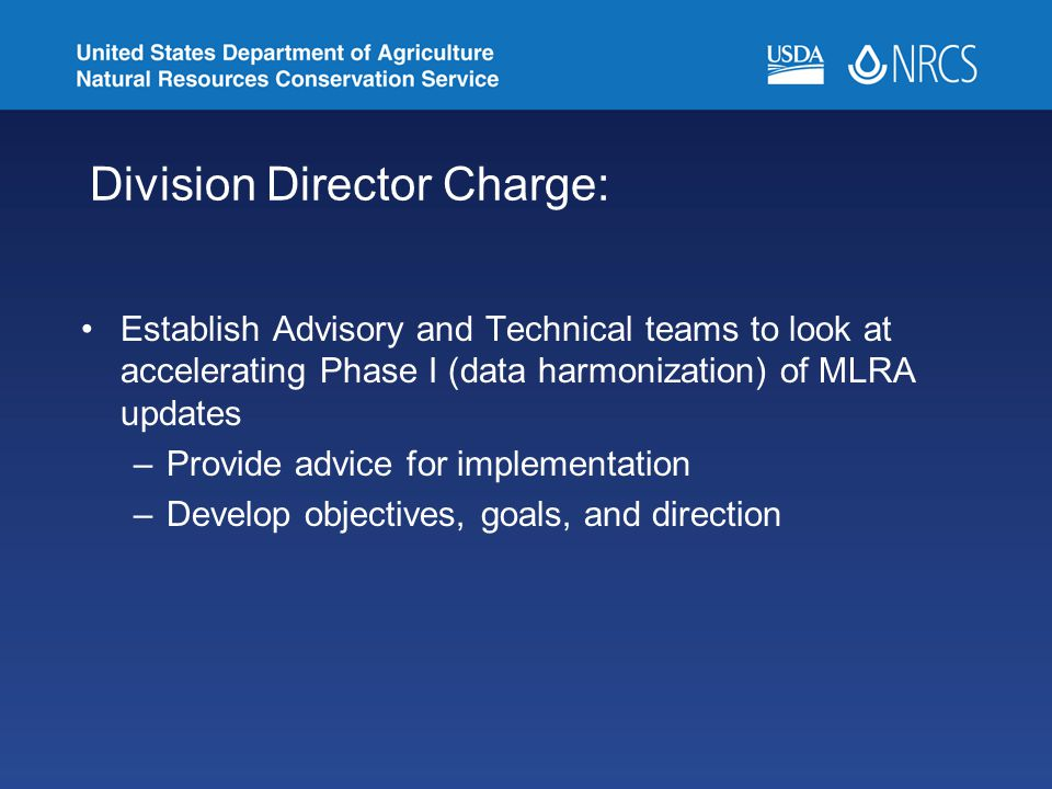Division Director Charge: