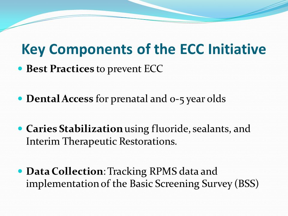 Key Components of the ECC Initiative
