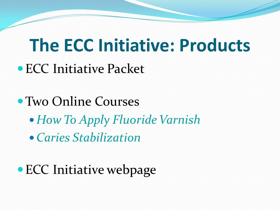 The ECC Initiative: Products