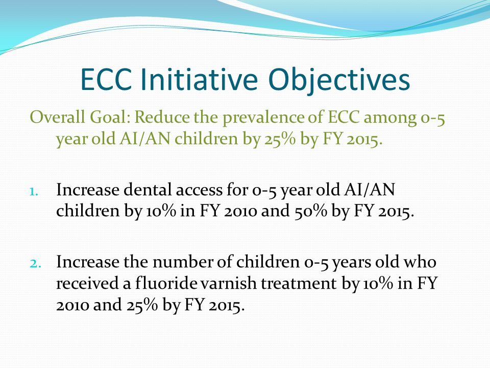 ECC Initiative Objectives