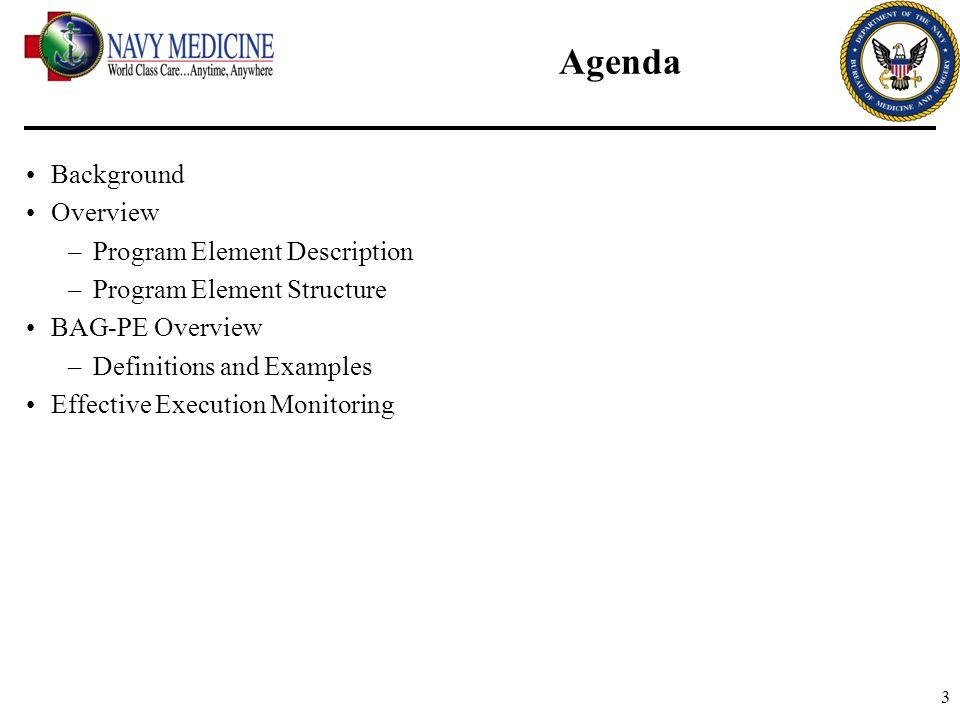 Agenda Background Overview Program Element Description