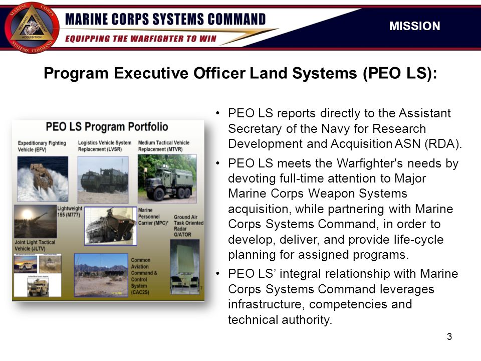 Program Executive Officer Land Systems (PEO LS):