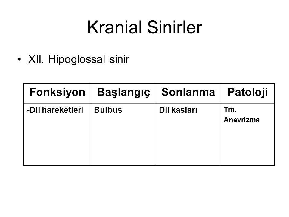 Kranial Sinirler XII. Hipoglossal sinir Fonksiyon Başlangıç Sonlanma