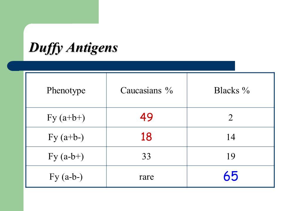 Duffy Antigens 65 49 18 Phenotype Caucasians % Blacks % Fy (a+b+) 2
