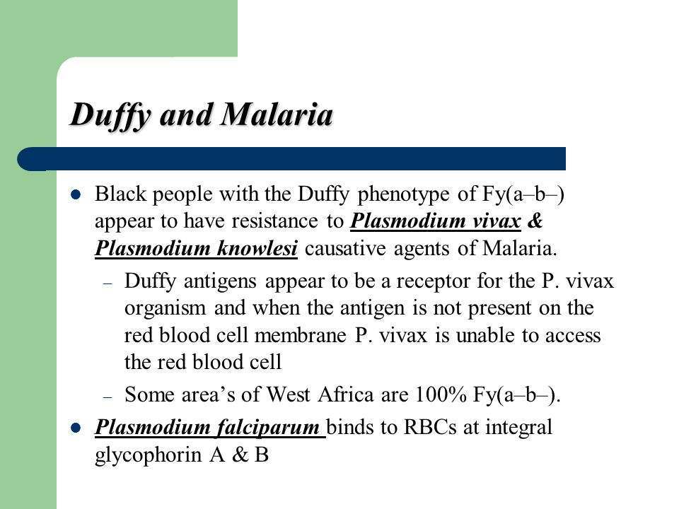 Duffy and Malaria
