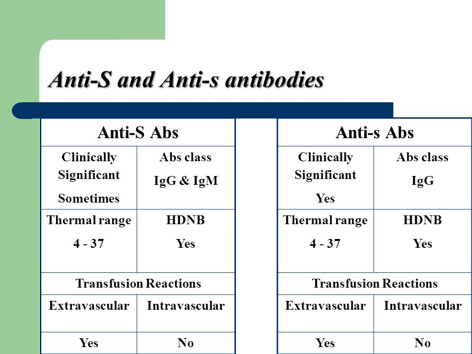 Anti-S and Anti-s antibodies