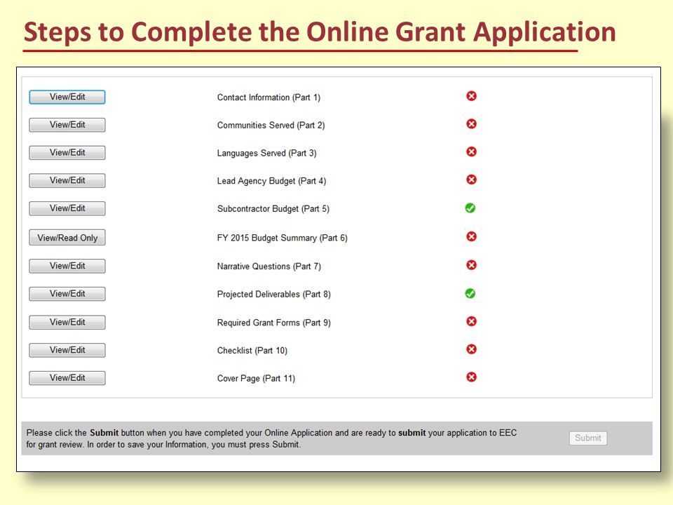 Steps to Complete the Online Grant Application