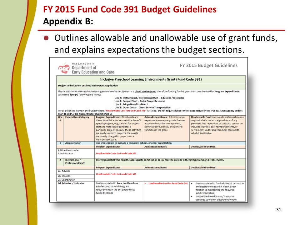 FY 2015 Fund Code 391 Budget Guidelines Appendix B: